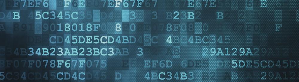 'Toegevoegde waarde accountant ligt in hoek IT general controls'